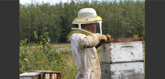 Cowichan Valley Hive Share
