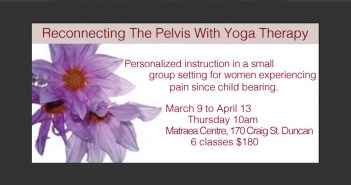 Reconnecting the Pelvis with Yoga Therapy: Group Yoga Therapy Class in Duncan